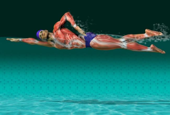 Plivanje 6 Ne rekreirate se? Počnite da plivate!