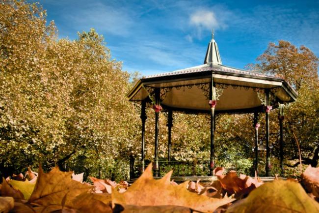 Autumn Tri predloga za pristupačan jesenji izlazak