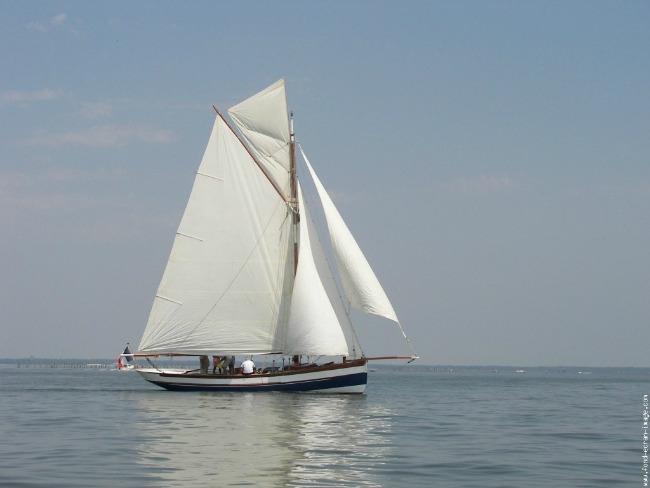 jedrilica1 Ah te jahte, čamci, jedrilice...