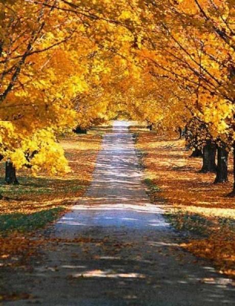 Tri predloga za pristupačan jesenji izlazak