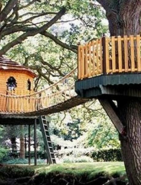 Kućice na drvetu za iznajmljivanje