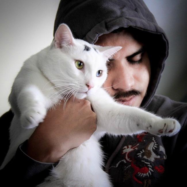 mačke44 Muškarci koji vole mačke