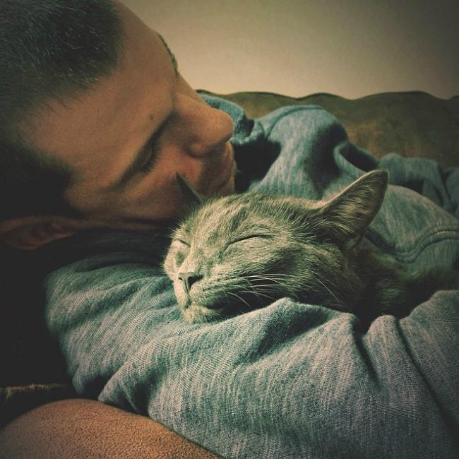 mačke66 Muškarci koji vole mačke
