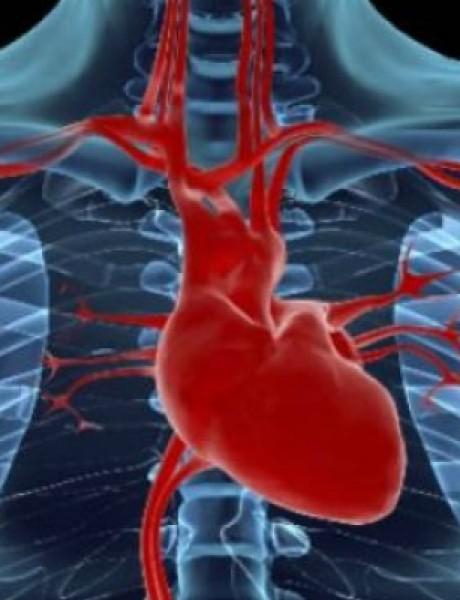 Pet znakova da srce nije zdravo