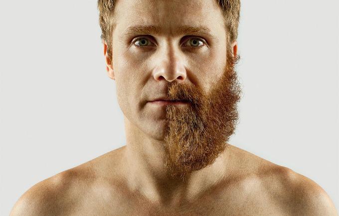pola brade 1 Pola   pola samostalna berbernica
