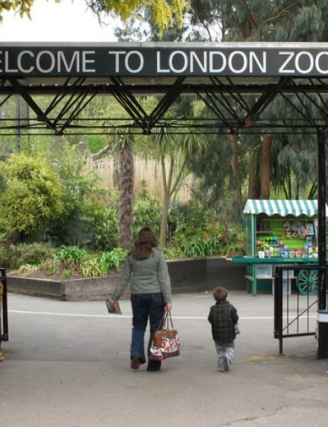 Da li bi proveo noć u zoo – vrtu?