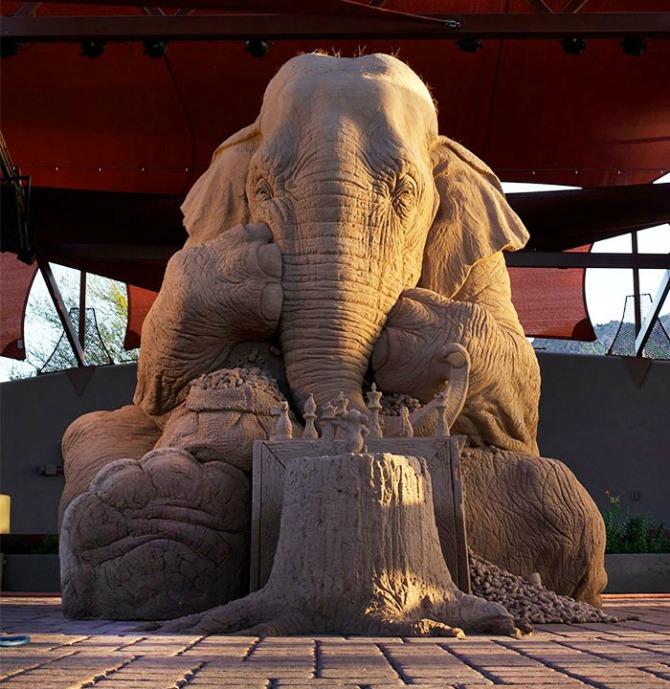 Pogled na ovog SLONA će vas oduševiti Pogled na OVOG slona će vas oduševiti