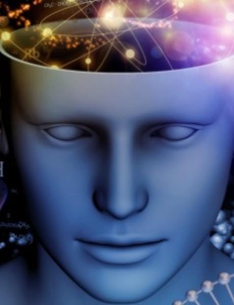 Dokumentarne serije koje utiču na našu inteligenciju