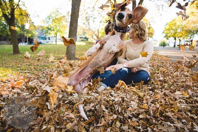 Znate li zašto je vaš pas srećniji od vas Znate li zašto je vaš pas srećniji od vas?