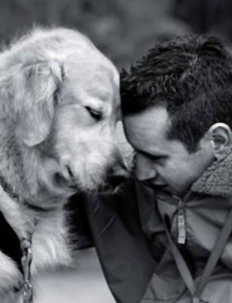 Znate li zašto je vaš pas srećniji od vas?