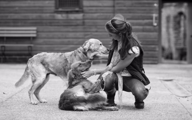 Šta treba da znate kad se zabavljate sa vlasnicom psa3 Šta treba da znate kad se zabavljate sa vlasnicom psa?