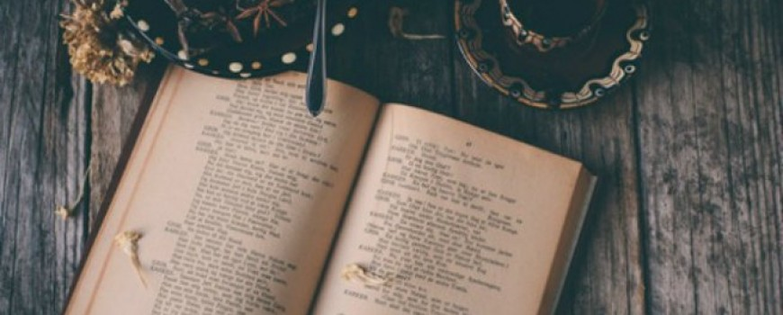 Citati velikana književnog sveta o porocima i vrlinama