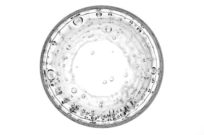 karim ghantous 329207 Nauka budućnosti – sintetička biologija