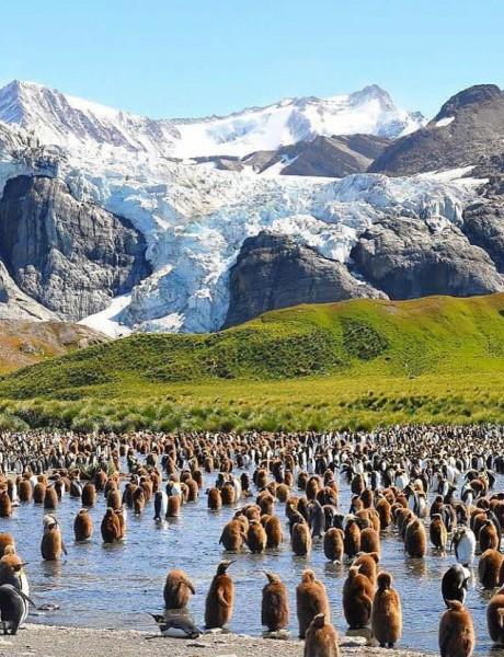 Da li otkrića na Antarktiku nose odgovor na pitanje života na Marsu?