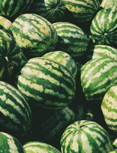 Biljke koje su ljudi kultivisali (bez genetske modifikacije)