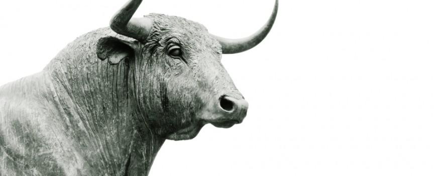 Pogrešna ubeđenja o životinjama koja uopšte ne dovodimo u pitanje