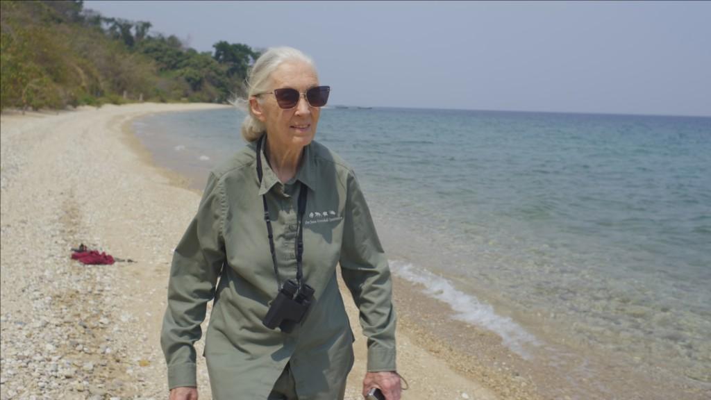 JaneGoodallTheHope 07 1024x576 National Geographic obeležava 50. godišnjicu Dana planete Zemlje